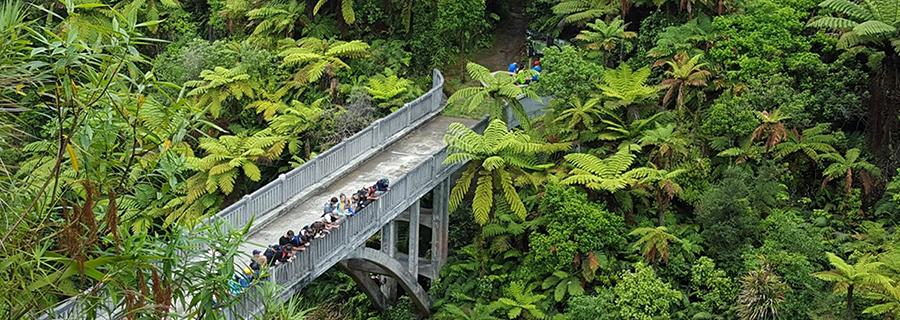 bridge_Whanganui-River.jpg