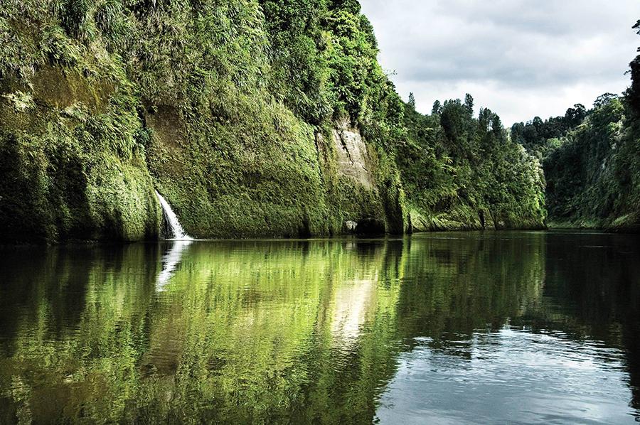 whanganui_river_1.jpg