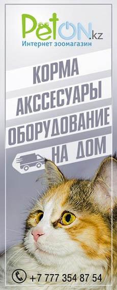 Зоо магазин Петон кз